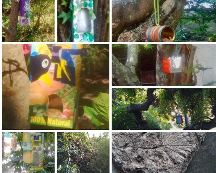 Hacemos comederos para los pájaros del jardín con materiales de reciclaje
