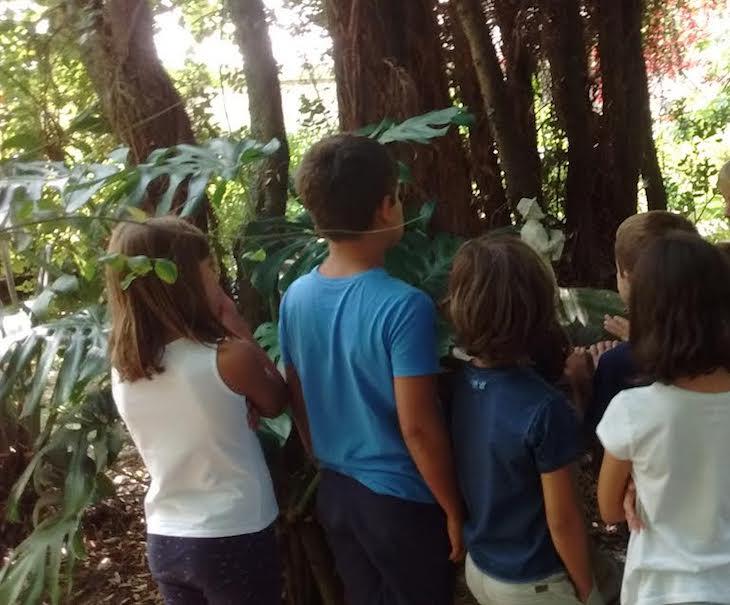 Inventamos una historia sobre la estatua de la fuente y las sombras del jardín en nuestra gincana de los viernes