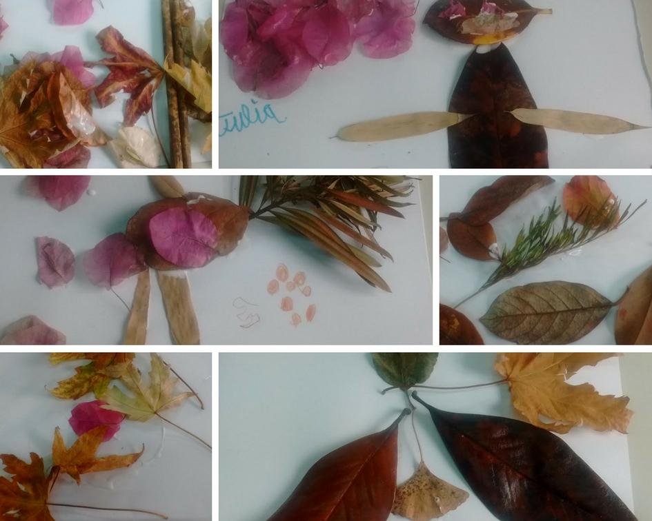 Hicimos creaciones artísticas con hojas y flores del suelo del jardín