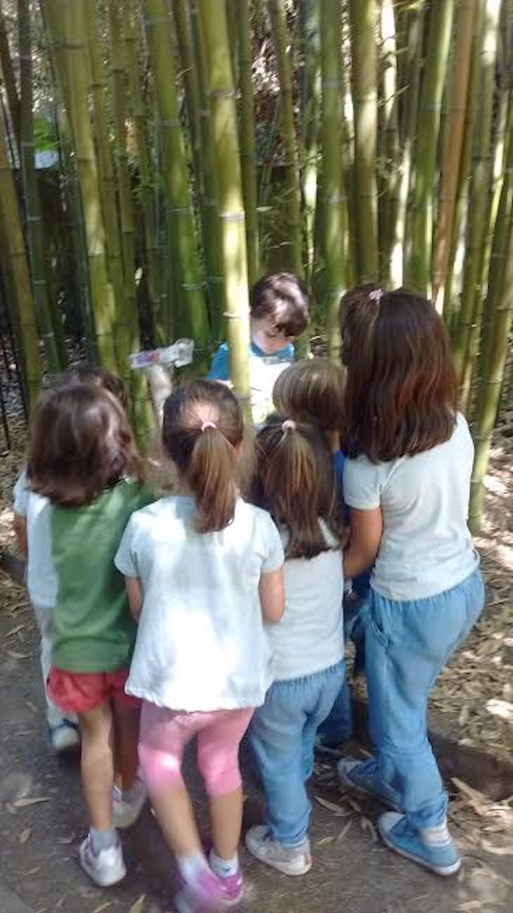 Novena semana en el campamento de la Fundación Sales, por Ana González Somoza