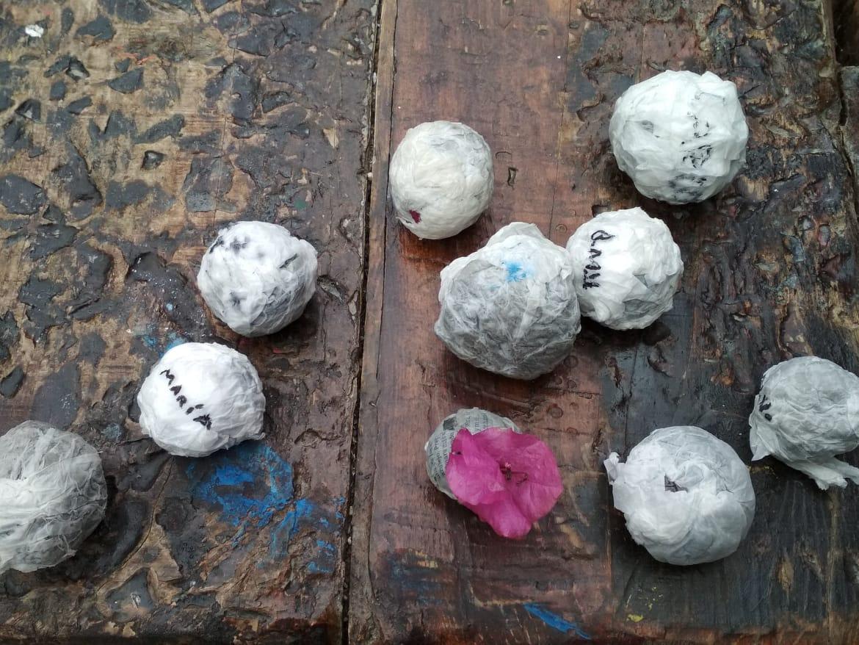 L@s mayores hicieron bolas de semillas.