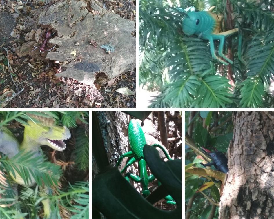 Animales escondidos en nuestro bosquete.